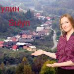 Sulyn
