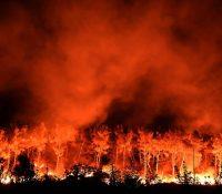 Днесь 1200 українськых пожарників гасить обровскый пожар