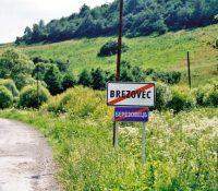 Коло Березовця затримали двох Турків без документів