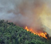 В Італії боюють із пожаром