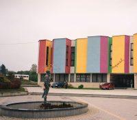 Музей Варгола має проблемы