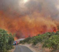 В центрі Італії боюють з лісным пожаром