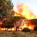 A fire started in the hills of Gigaro in La Croix-Valmer near Saint Tropez. The fire was made worse by violent winds spreading it.