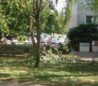 Екстремна буря в Братїславі валяла стромы