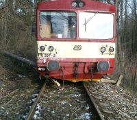 Влакы на трати міджі Чеськом і Словеньском заставів стром