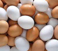 В Італії было 90 000 контамінованых яєц сконфішкованых поліційов