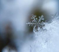 В Словакії з причины артичной зимы помер четвертый чоловік