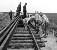 В концентрачнім таборі Бухенвалд колиць вмерло 56.000 осіб