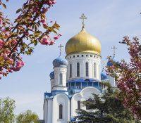 Києв хоче на Закарпатя выслати прапор уточной бріґады