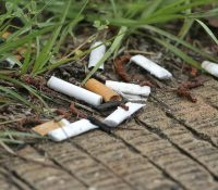 Špak od cigaretľi je pro pryrodu katastrofa