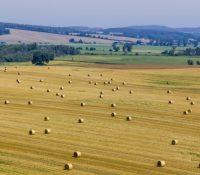 За рік 2017 мають землегосподарї позитивны выслідкы господарюваня