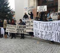 12 актівістів орґанізації Ґрімпіс были арештованы