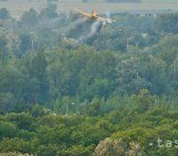 Штатный подник Lesy SR планують з пострікуваням дубового лісу