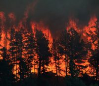 На острові Евія мусили евакуовати жытелїв огроженых пожаром