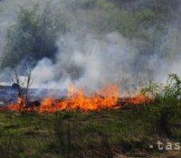 В Портуґалії гасило скоро 1800 пожарників великый пожар