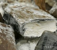 Німецькы цолиници найшли пашуваный кокаїн в сумі 350 міліонів евр