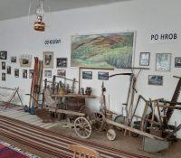 Muzeum v Dričnij