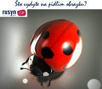 Граме на желаня / Hrame na želaňa 18. 8. 2019