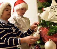 Шпыталї будуть мати жывы рождествены стромикы