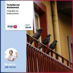 Jak s'a zbavyty holubiv na balkoňi i na parapeťi / Як ся збавити голубів на балконї і на парапетї