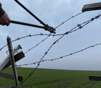 Выстава портретів в Пряшові приближує страх другой світовой  войны